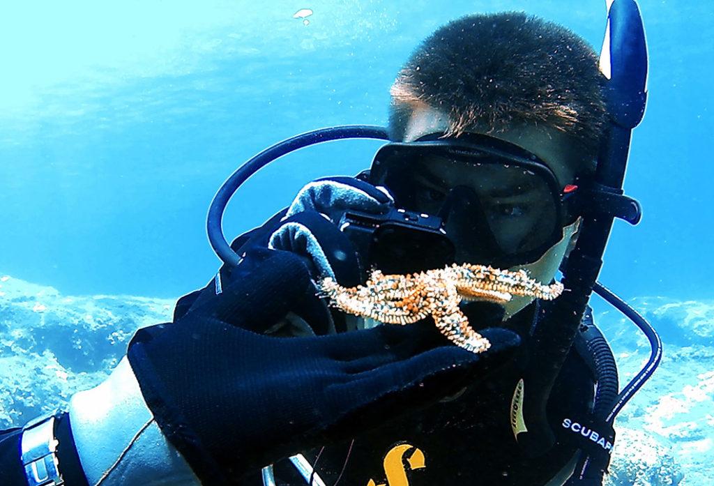 Морская звезд остров Родос